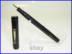 Rare Vintage THE MASTER PEN Hard Rubber Fountain Pen FLEXIBLE M Nib