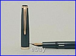 Reform 4251 Black Piston Fountain Pen14k F to BBB Flex Nib Rare Vintage Mint