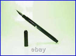 ULTRA RARE Hard Rubber German KLIO Eyedropper Fountain Pen Flexy EF Nib